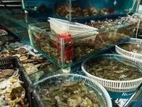 粤消委会对销售毒海鲜案提起公益诉讼 要求十倍赔偿