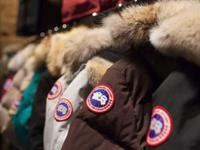 网易考拉再回应加拿大鹅事件:若为正品请消费者道歉