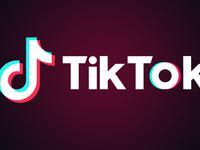 """TikTok日本推出""""育成计划"""" 扶持千名垂直类创作者"""