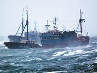 珠江口一艘载有8名船员的渔船失联 已展开水下探摸