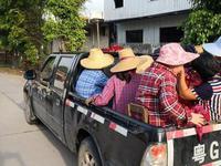 湛江一小货车违法搭载16人 司机还穿拖鞋开车被重罚