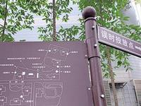 垃圾該扔哪個桶? 廣州設智能裝置提醒市民準確投放
