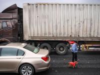 京港澳粤北段拥堵严重 高速路上现遛狗场面