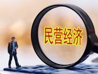 22位全国政协委员联名提案 支持民营企业渡难关