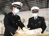 广州海关关区棉花进口量猛增