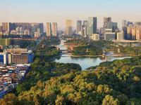 广东森林绿地为鸟类提供了栖息地(资料图) 广东省林业局 供图