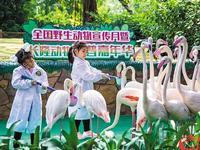 长隆举办珍稀动物科普课堂 家门口探索五大洲珍奇动物