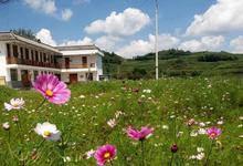广东省文化和旅游厅与农业银行广东省分行 签订战略合作协议