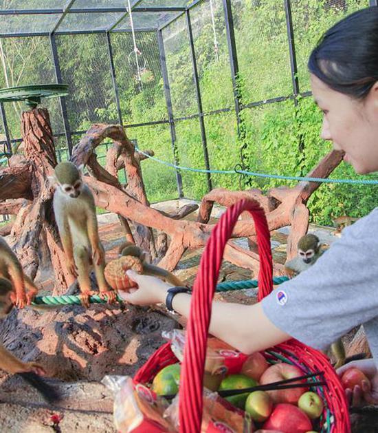 动物园饲养员给小动物送月饼