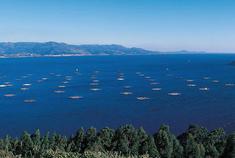 加利西亚 蓝色大海的美丽诱惑