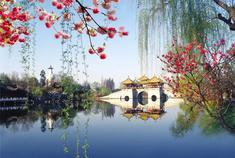 这座江南小城藏着最美的诗画烟雨