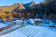秦岭寻中国最大天坦雪原