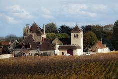 历史悠久的葡萄庄园