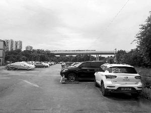 沙贝地铁站附近的停车场停了不少非粤A牌车。