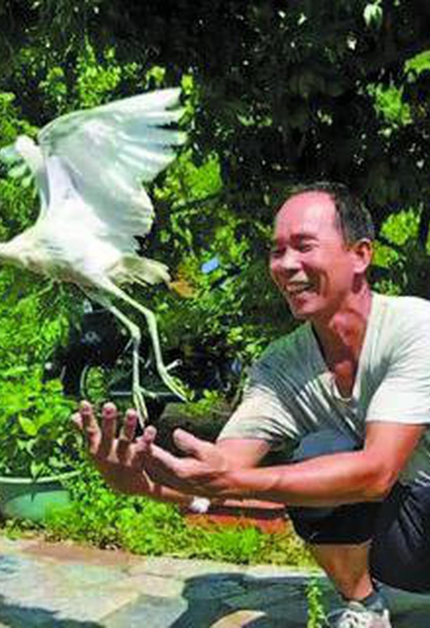 """今年冬天 整个江门变成""""鸟的天堂"""""""
