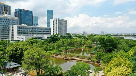 广州国际生物岛标识性景点之一水墨园。
