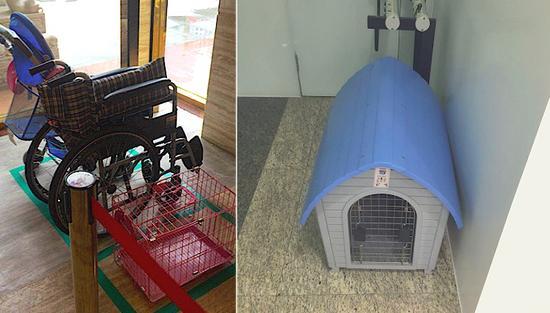 华夏银行和建设银行都有提供宠物笼
