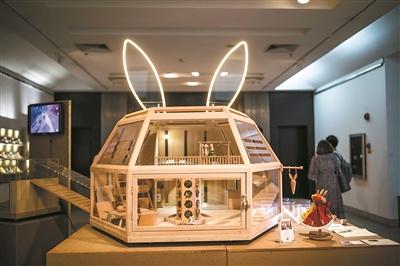"""设计者给自己的宠物兔子搭了一个""""家""""。"""