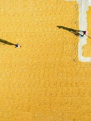 喜看稻菽千重浪 广州农民丰收节开幕