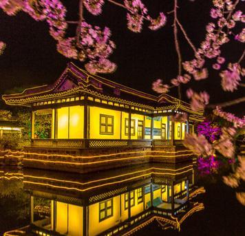@陆建华摄影:世界三大赏樱圣地 太湖鼋头渚等你来