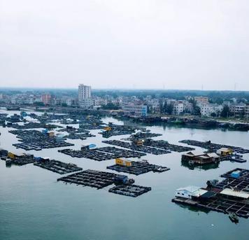 菜尾蝗-旅行摄影:畅游雷州半岛