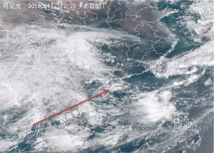 西南季风开始活跃