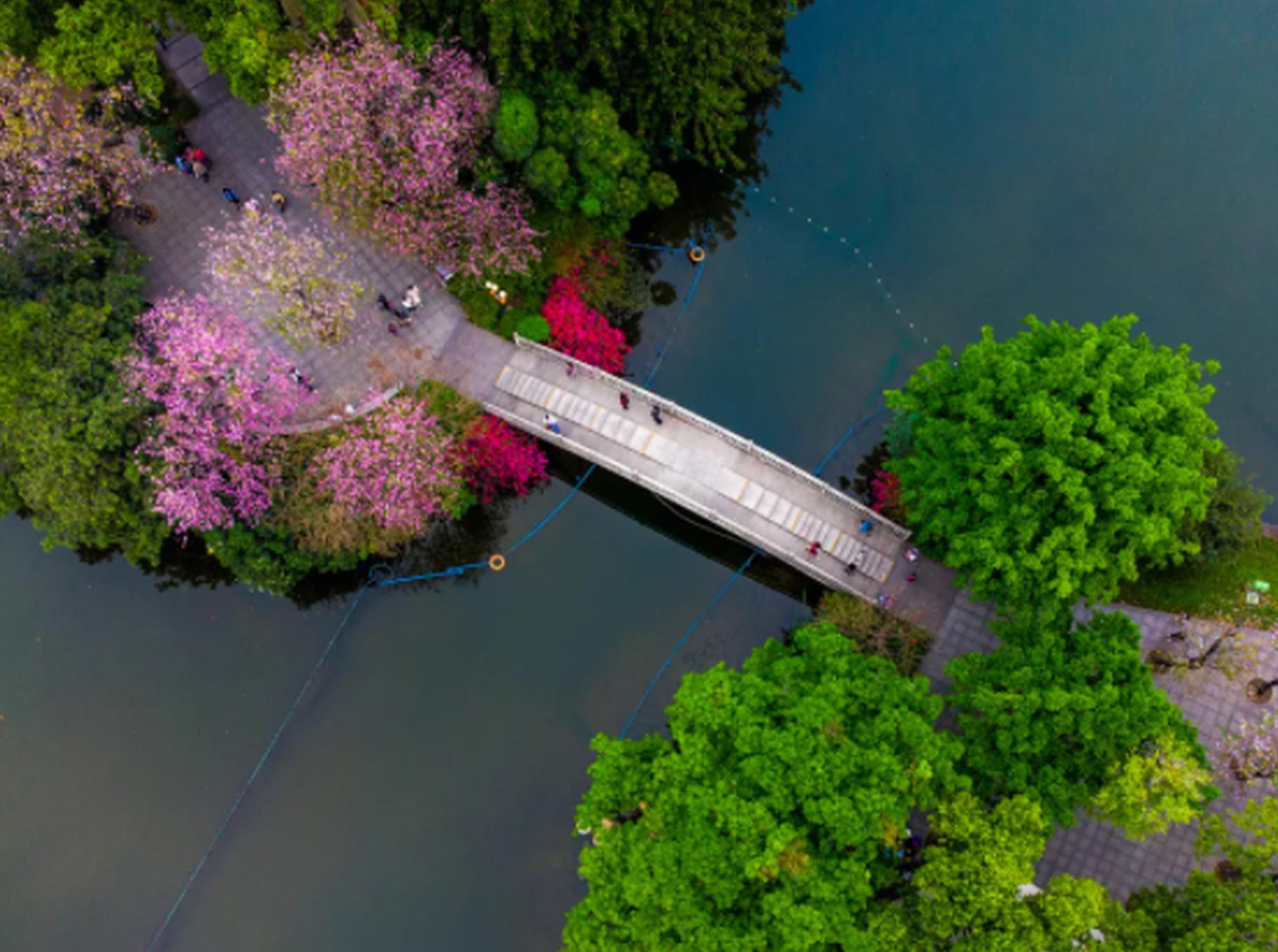 空中画卷带你俯瞰广州的春夏之美 探访人间仙境