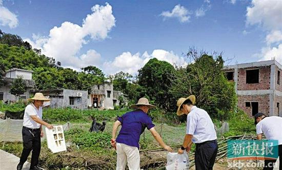 工作队参与人居环境整治工作