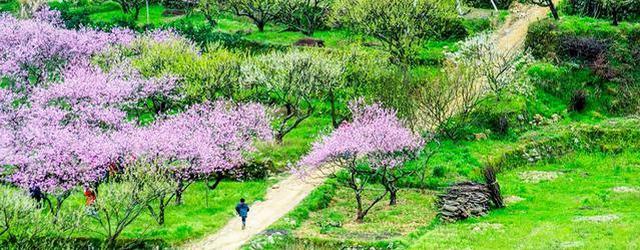 如画像仙境的广东乡村美景