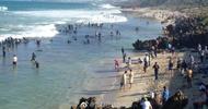 上万人奔向澳洲海滩挖鲍鱼