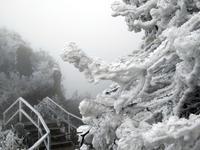 """广东下雪了!""""南粤小华山""""一夜成冰雪世界(雪图)"""