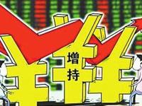 广东新价值违法增持科恒股份等四股票 遭罚205万