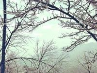 乐虎国际娱乐(唯一)官方网站寒潮2日无重大灾情险情 今起雨止转晴仍有低温