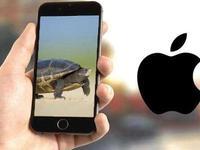 苹果手机系统更新后变慢 上海消保委致函苹果公司