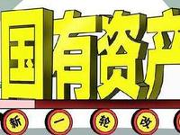 乐虎国际娱乐(唯一)官方网站国有资产将晒全部家底 人大将首次审议国资报告