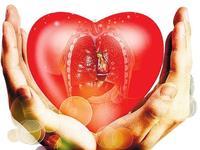 去年乐虎国际娱乐(唯一)官方网站捐献器官668例居全国第一 共挽救1900多人