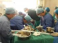 病人心脏停跳72小时后获救