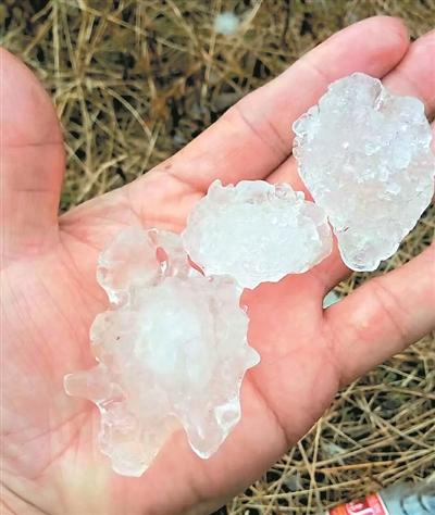 连州部分地方昨日遭遇冰雹袭击。