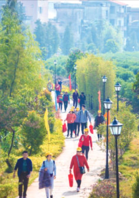 市民行走在龙眼村内。
