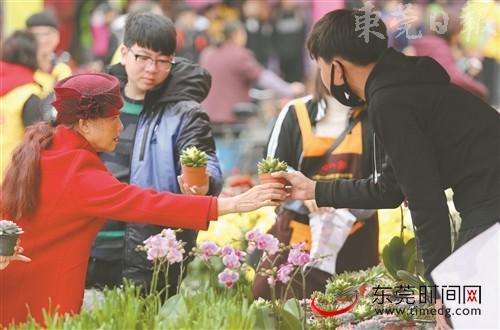 ■2月9日上午,2018东莞迎春花市开市,市民开心赏花、品花、买花