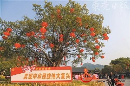 ■旗峰公园广场的榕树上挂满了喜庆的红灯笼