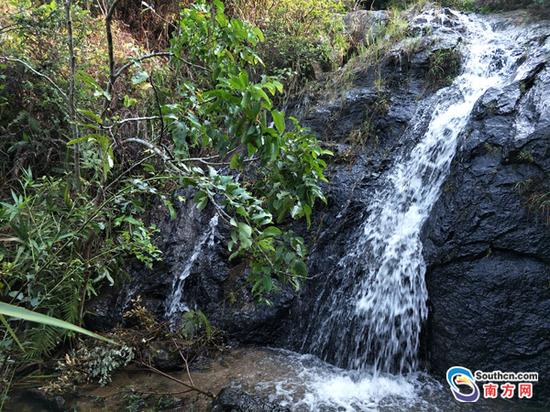 横琴粤溪蟹分布极其狭窄,目前只发现在大横琴山的三条溪流中有分布。