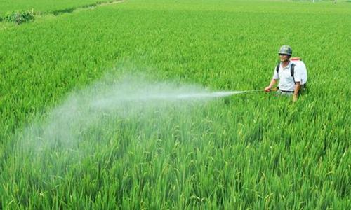 中国实现化肥农药使用量零