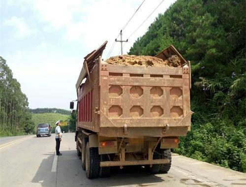 东莞开展联合专项整治行动