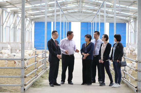 参观富平县博乐奶山羊养殖专业合作社