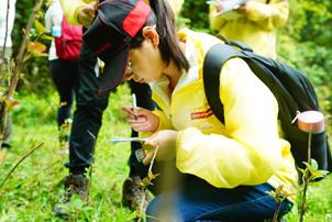 广汽丰田员工志愿者在记录植物信息
