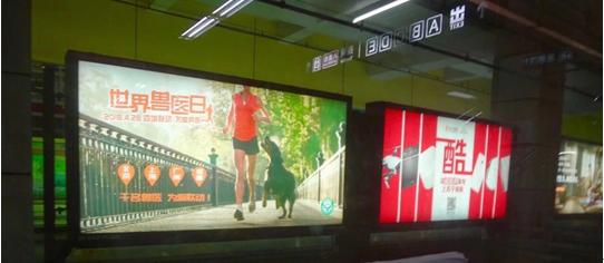 世界兽医日地铁广告
