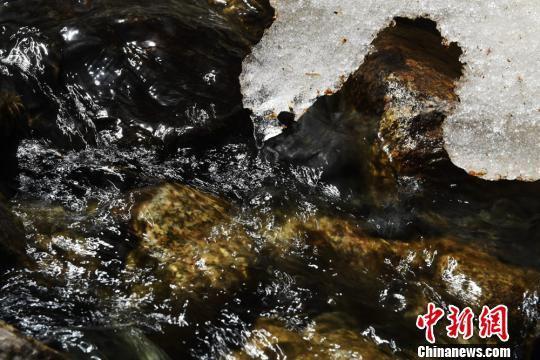 冰雪融化汇聚到河流中。 杨艳敏 摄