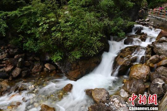 6月17日,甘肃宕昌县官鹅沟水流瀑布美景。 杨艳敏 摄