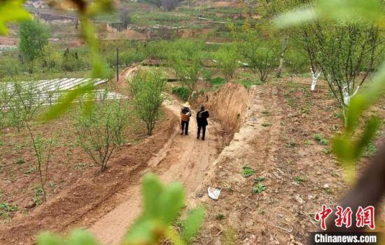 """图为甘肃陇南市武都区农民行走在修建中的""""花椒产业路""""上,花椒已成为当地主要增收产业之一。(资料图) 闫姣 摄"""